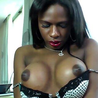 Ebony tgirl assfucking her lover doggystyle
